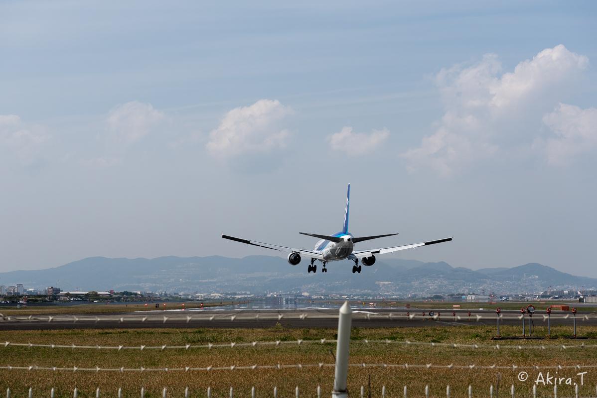 大阪伊丹空港 千里川堤防 -1-_f0152550_21124084.jpg