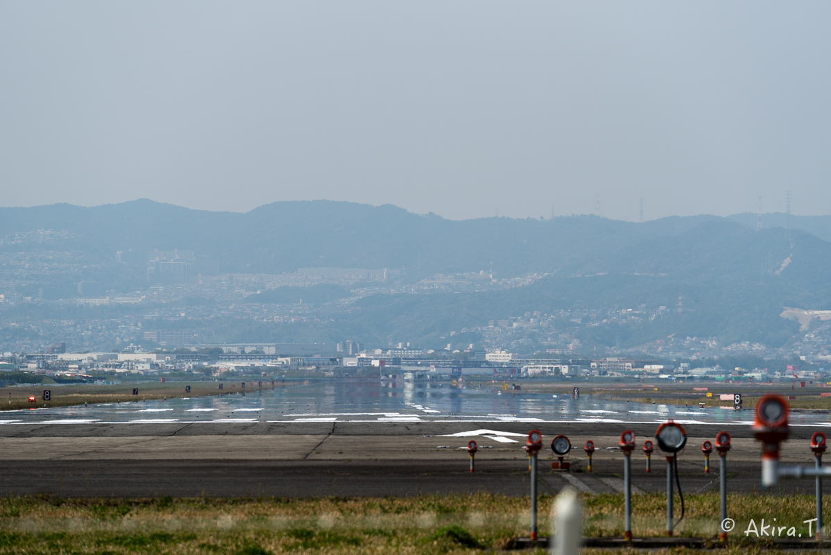 大阪伊丹空港 千里川堤防 -1-_f0152550_21125998.jpg