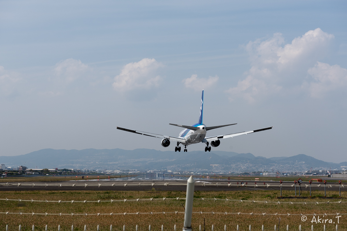 大阪伊丹空港 千里川堤防 -1-_f0152550_2112925.jpg