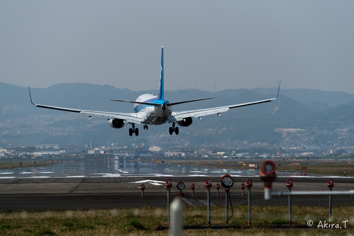 大阪伊丹空港 千里川堤防 -1-_f0152550_2114496.jpg