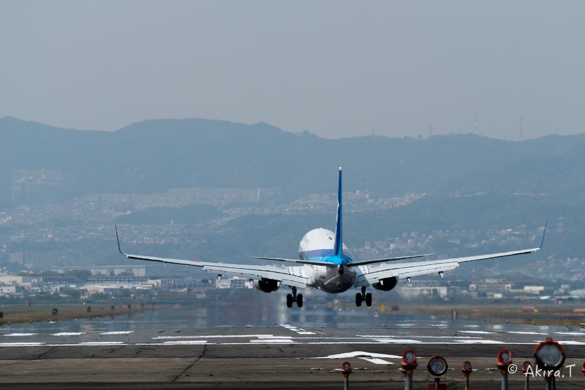 大阪伊丹空港 千里川堤防 -1-_f0152550_2115625.jpg