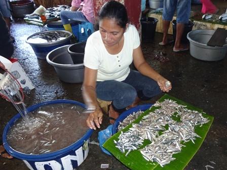 アンボン島(魚市場)_d0083068_12123592.jpg