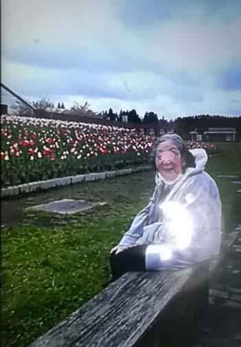 義母と夫がお花見ドライブ_f0019498_1841106.jpg