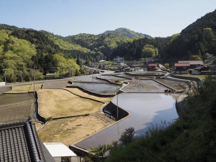 客人神社の西の風景(田んぼのしろかき)_c0116915_22414971.jpg