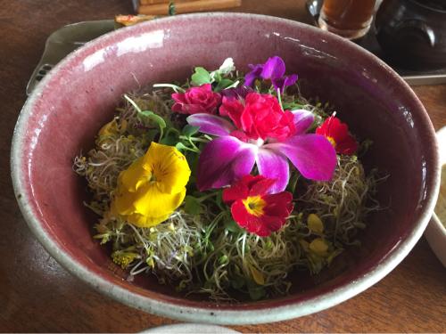 16年3月ソウル 18★春ならではのお花のビビンバ@タダメトゥル_d0285416_20583939.jpg