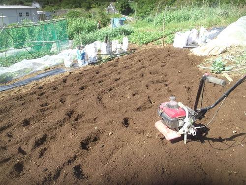夏野菜の植え付けです(二度目)_b0137932_21475089.jpg