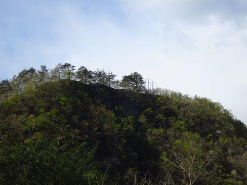 岩泉町写真スポット「缺山の断崖」をきれいに撮れる場所。_b0206037_08193481.jpg