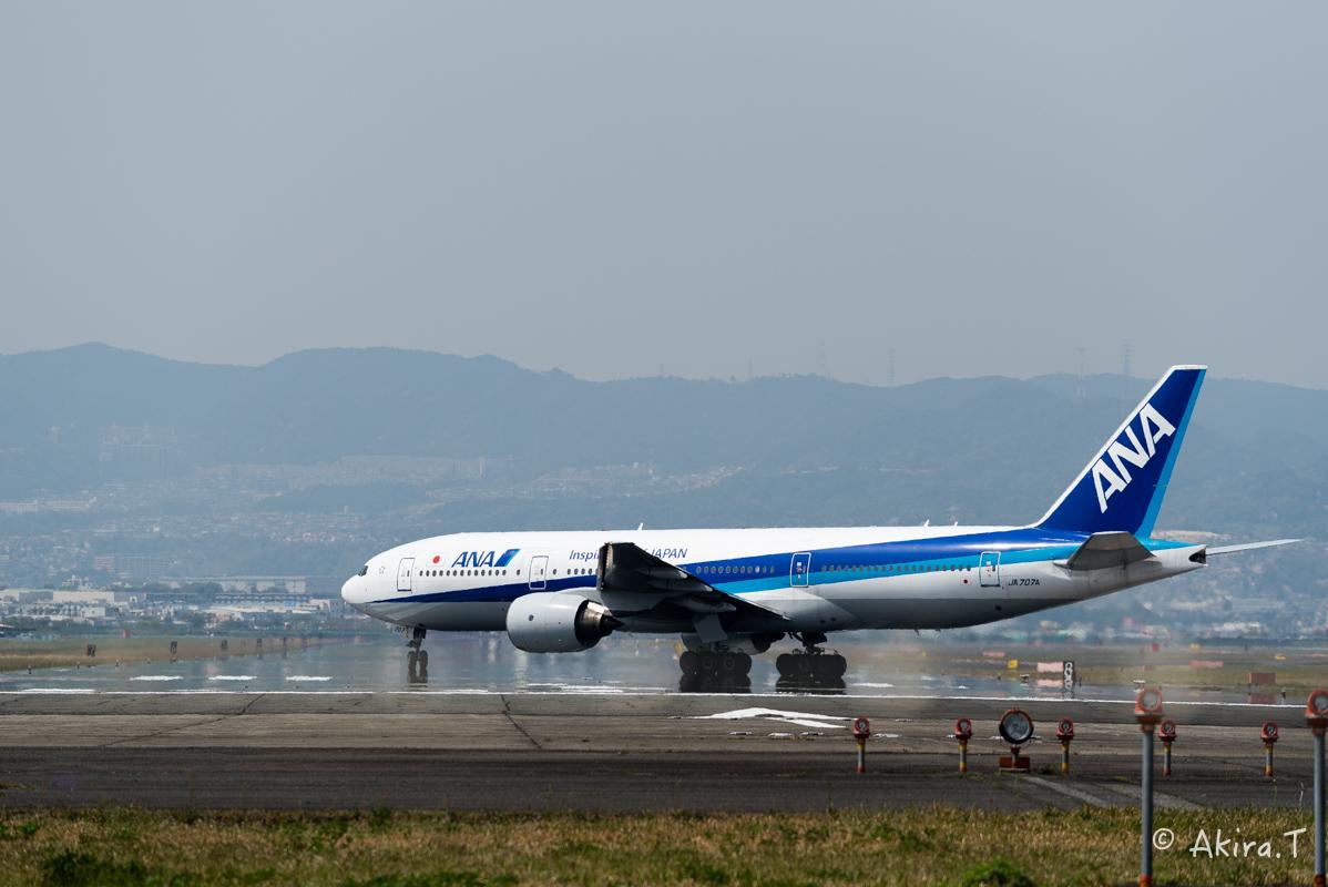 大阪伊丹空港 千里川堤防 -2-_f0152550_18532810.jpg