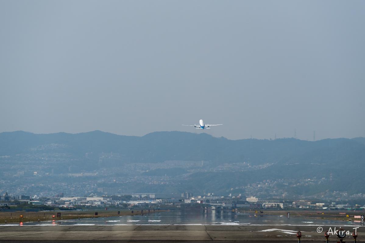 大阪伊丹空港 千里川堤防 -2-_f0152550_18542124.jpg