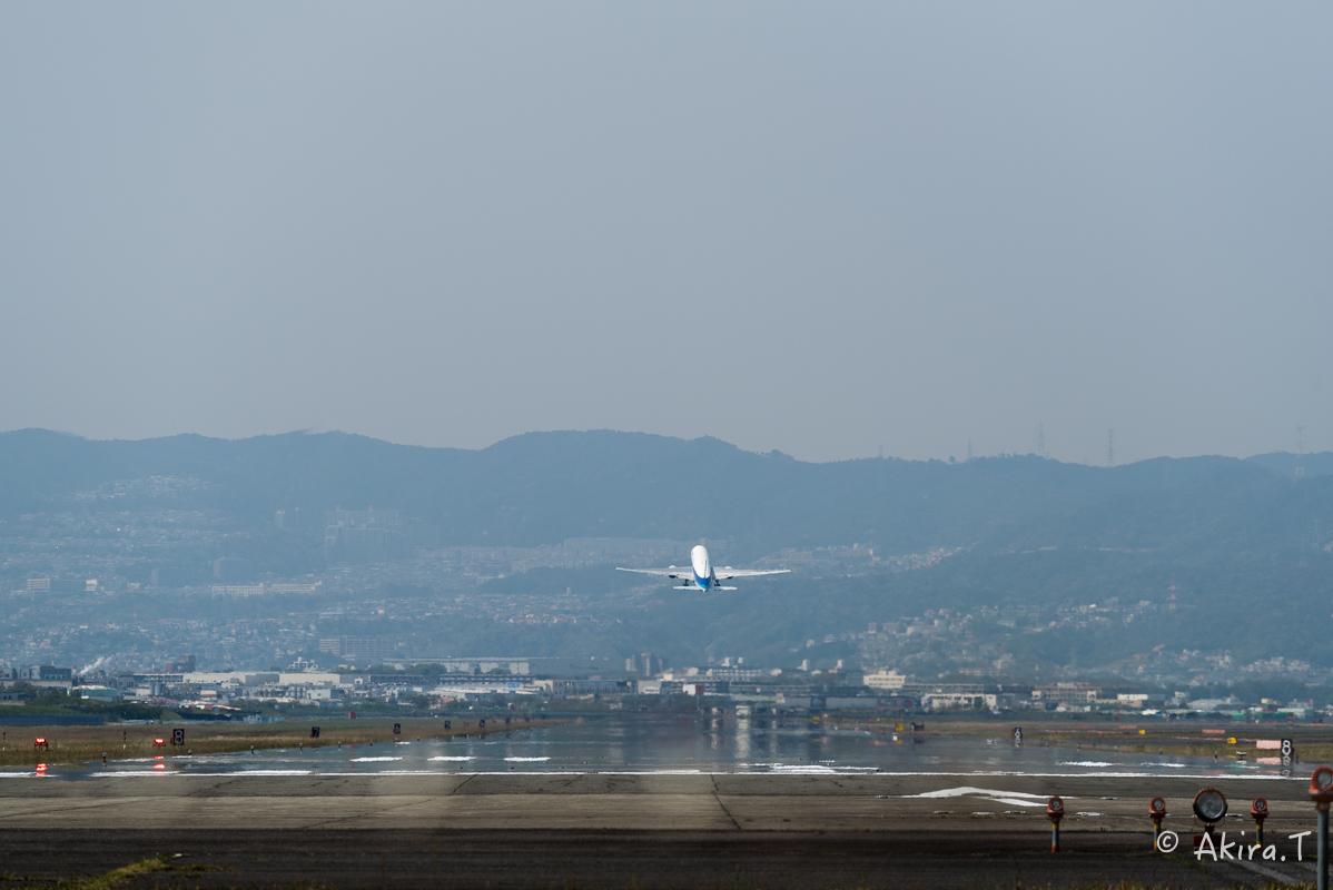大阪伊丹空港 千里川堤防 -2-_f0152550_1854717.jpg