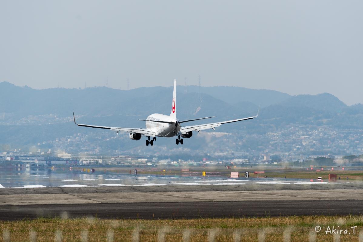 大阪伊丹空港 千里川堤防 -2-_f0152550_185521.jpg