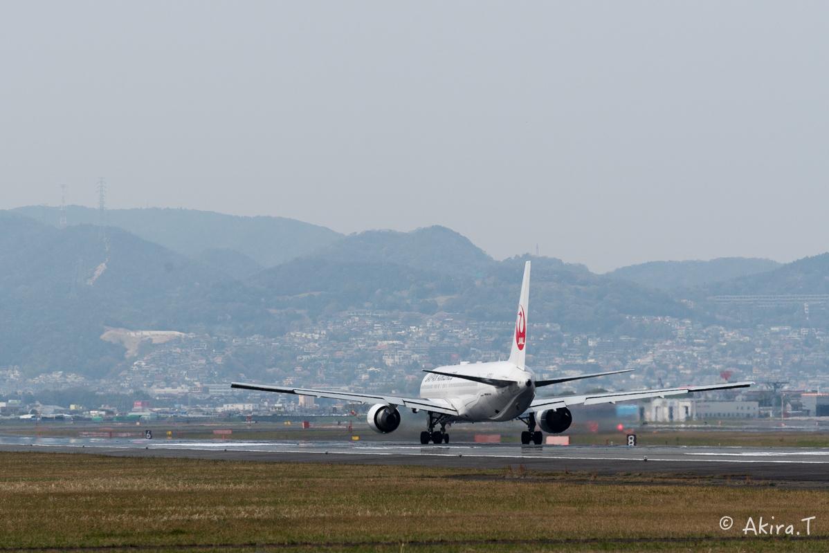 大阪伊丹空港 千里川堤防 -2-_f0152550_18561276.jpg