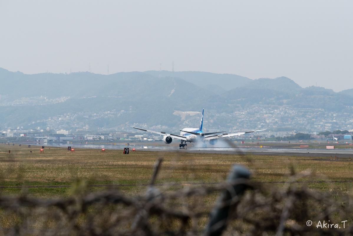 大阪伊丹空港 千里川堤防 -2-_f0152550_18573427.jpg