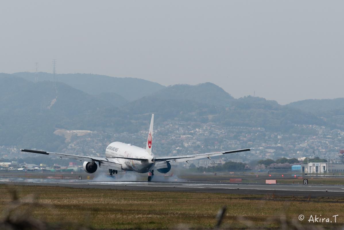 大阪伊丹空港 千里川堤防 -2-_f0152550_18585118.jpg