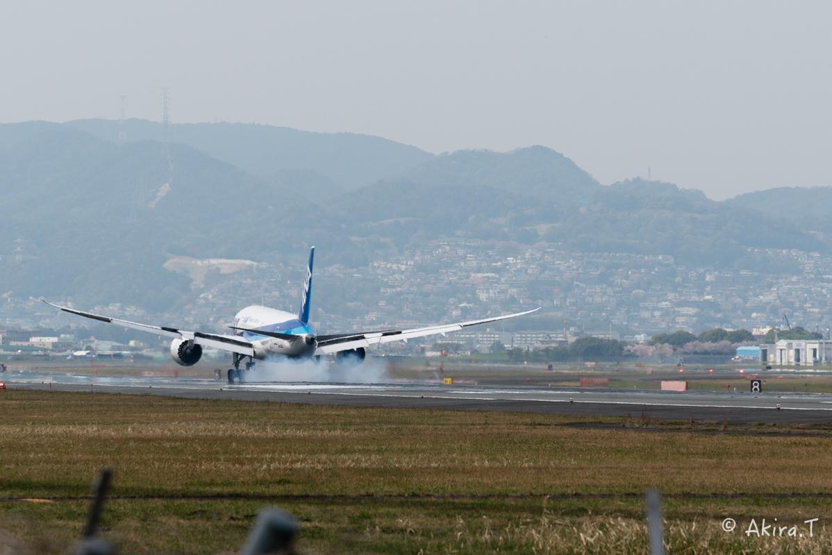 大阪伊丹空港 千里川堤防 -2-_f0152550_18594248.jpg
