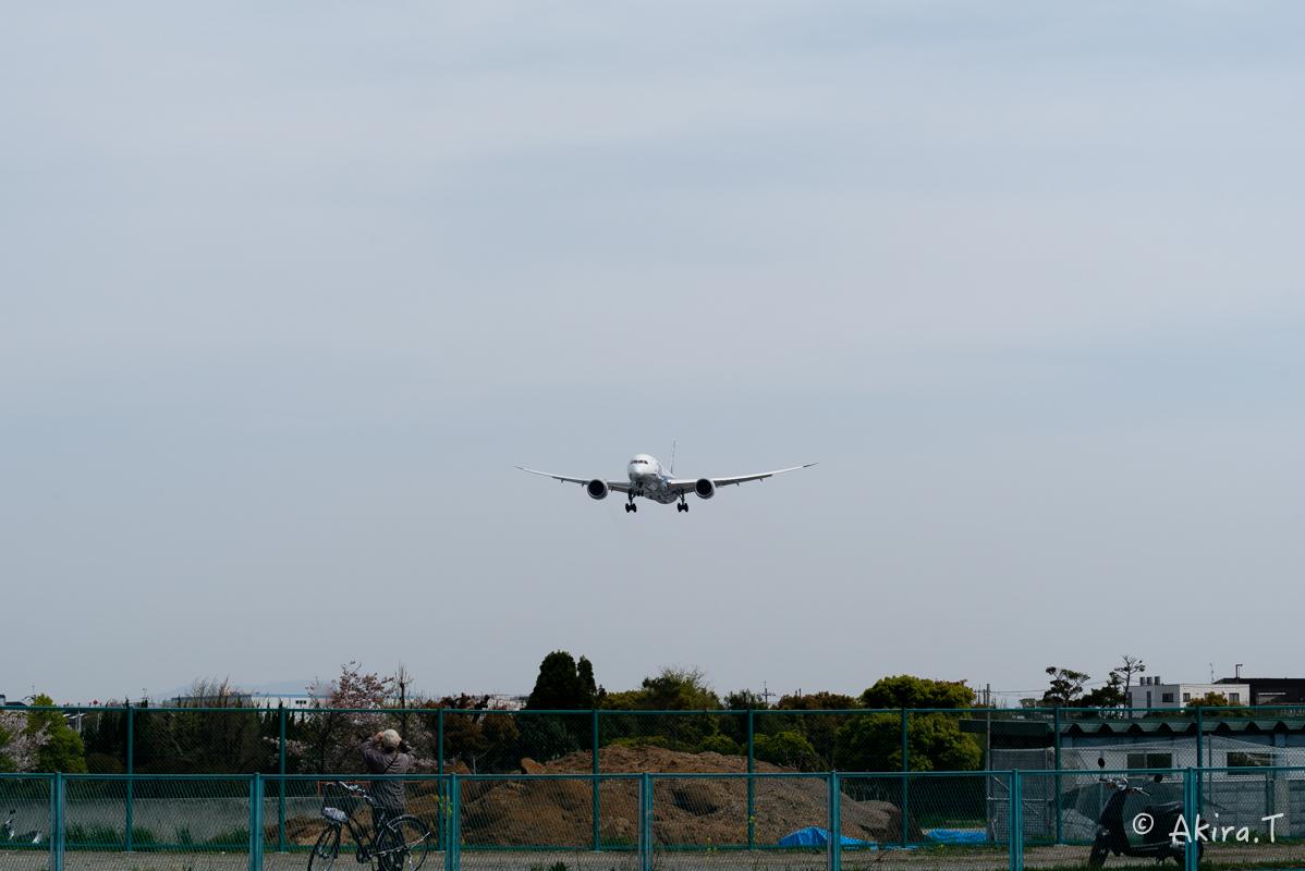 大阪伊丹空港 千里川堤防 -2-_f0152550_1859787.jpg