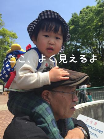 孫っち1号くん、初体験に満面の笑顔☆*:.。. o(≧▽≦)o .。.:*☆_b0175688_21244780.jpg