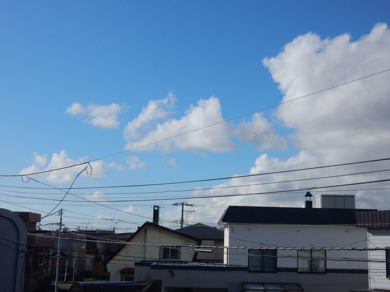 昨日より寒いもののだんだんと回復_c0025115_01293782.jpg