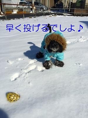 f0326925_17140928.jpg