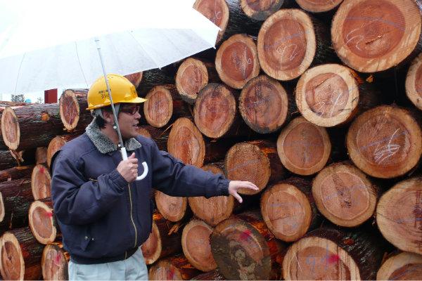 材木工場に行って来ました 1_e0132960_17462890.jpg