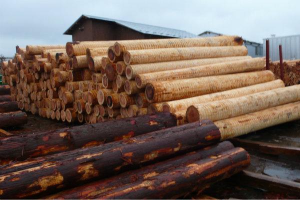 材木工場に行って来ました 1_e0132960_1746376.jpg