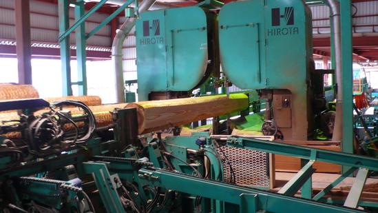 材木工場に行って来ました 1_e0132960_17595239.jpg