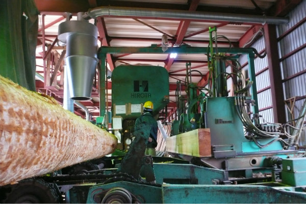 材木工場に行って来ました 1_e0132960_1811445.jpg