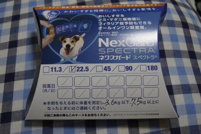 c0325866_21430201.jpg