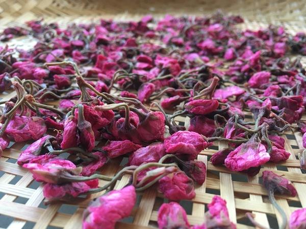「桜の塩漬け」_a0120513_22334495.jpg