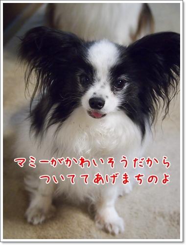 d0013149_00155993.jpg