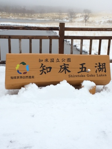 春の北海道〜知床ウトロから富良野_e0195766_20330201.jpeg
