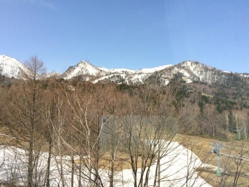 春の北海道〜富良野、美瑛から札幌_e0195766_21051442.jpeg
