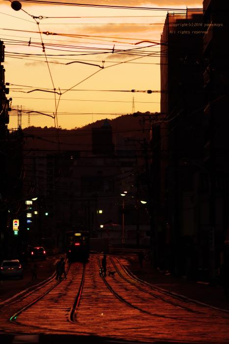 雨上がりの夕焼け_d0309612_21424621.jpg