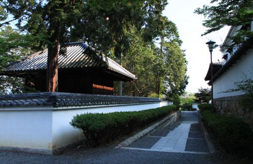 南禅寺も青もみじ_e0048413_21122883.jpg