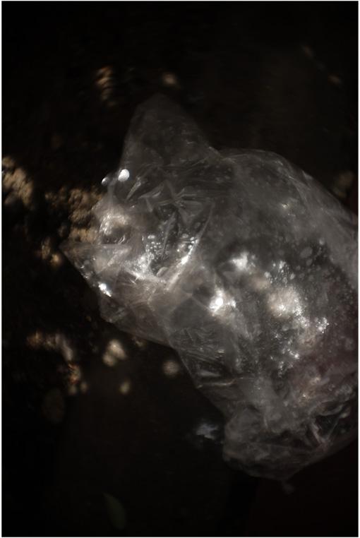 b0226423_23243637.jpg