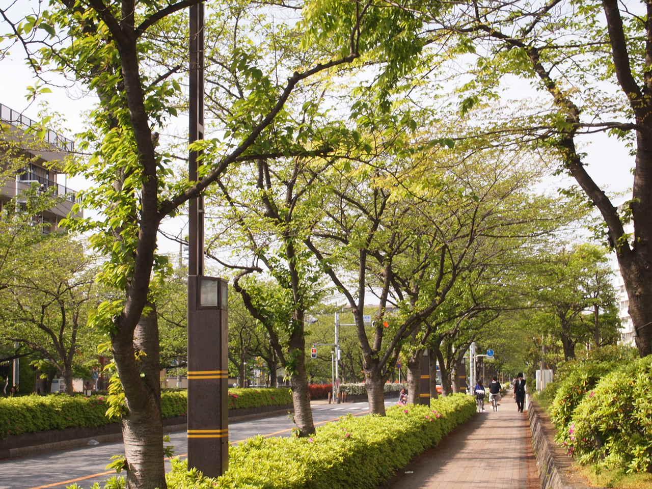 足立区の街散歩  139_a0214329_8371981.jpg
