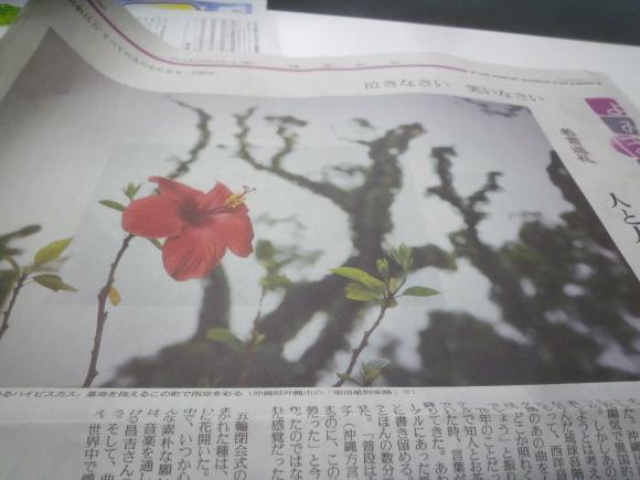 新聞をバイト先でもらってくる_b0217741_02035519.jpg