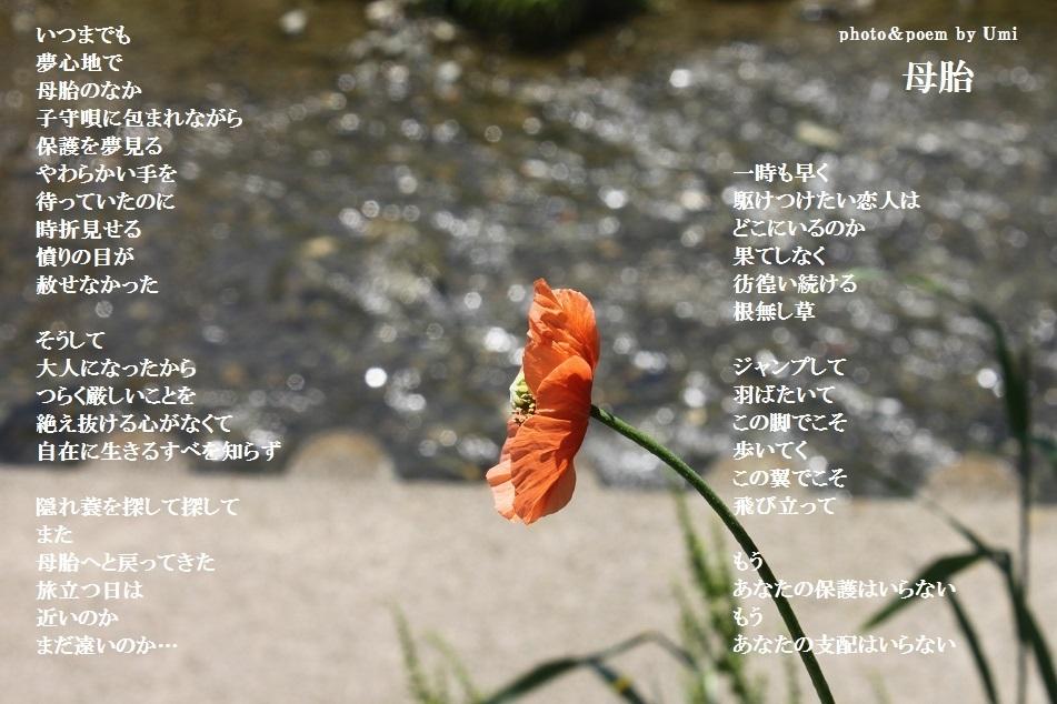 f0351844_14165411.jpg