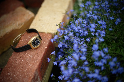 azul..púrpura..._f0057849_2122463.jpg