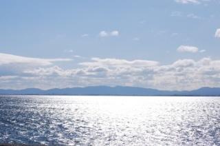 春の海のこと。追記。_b0299052_12240406.jpg
