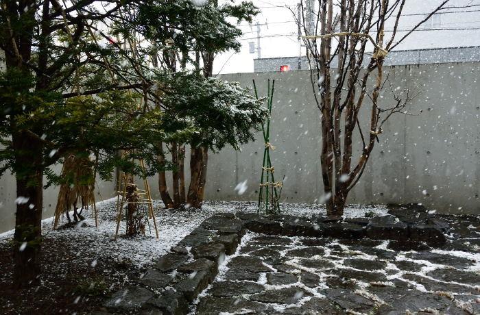 雪のち桜_e0213363_18150372.jpg