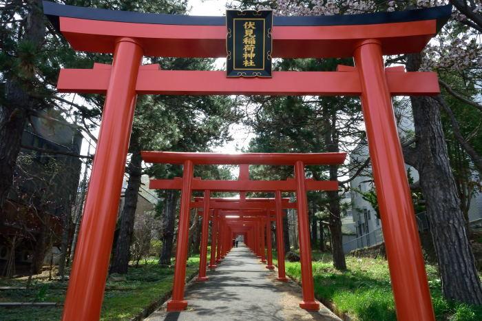 雪のち桜_e0213363_18162440.jpg