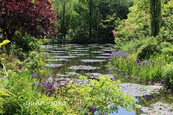 モネの庭_e0340671_20415219.jpg
