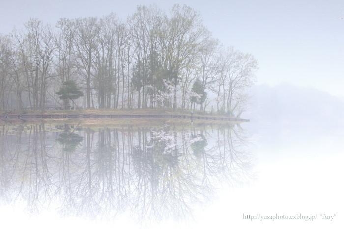misty_e0347431_17151187.jpg