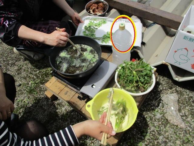 オフごっこ&山菜天ぷらパーティー_c0080863_16553818.jpg