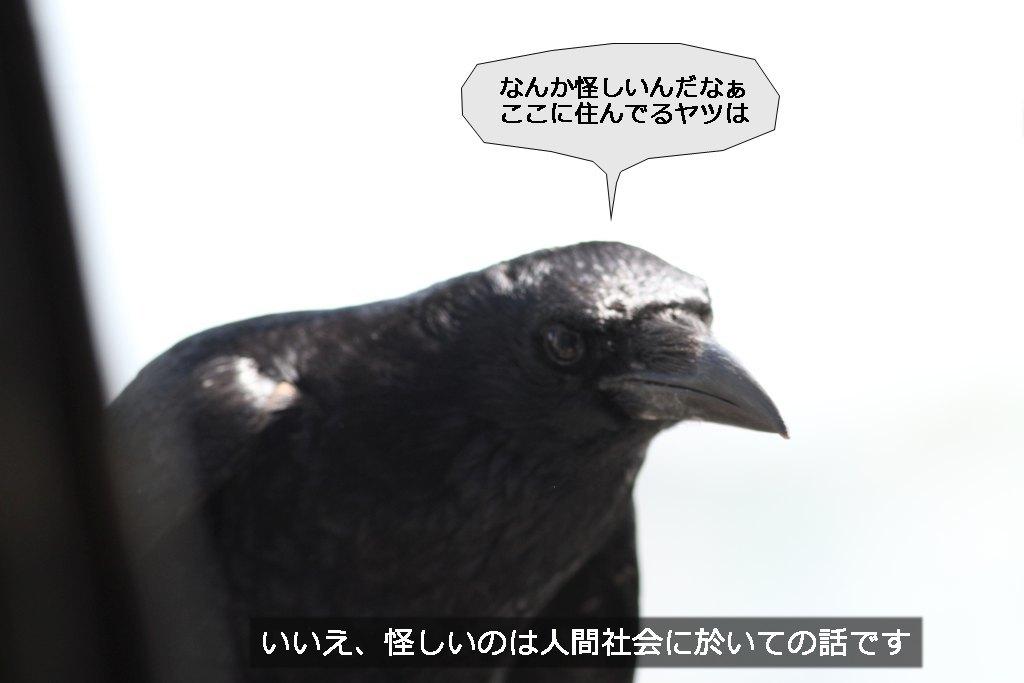 b0174191_19374012.jpg