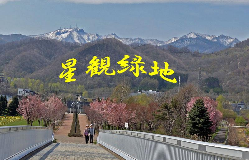 桜・・・2_d0162994_7404136.jpg