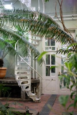 フィンランド・エストニアの旅【6】植物園編 _b0102217_16211391.jpg