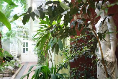 フィンランド・エストニアの旅【6】植物園編 _b0102217_1621386.jpg