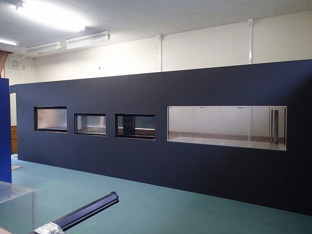 ウミガメの展示室_d0177220_1115238.jpg